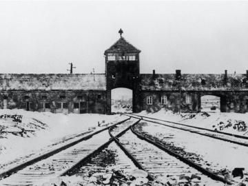 Name:  Auschwitz.jpg