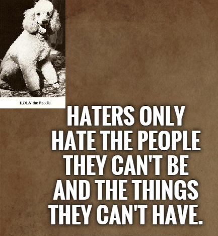Name:  1380006844-haters-only-hate-the-people-they-cant-be-and-the-things-they-cant-have-quote-1.jpg Views: 57 Size:  72.2 KB